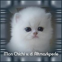 Mon_chichi1.jpg
