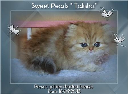 talisha.jpg
